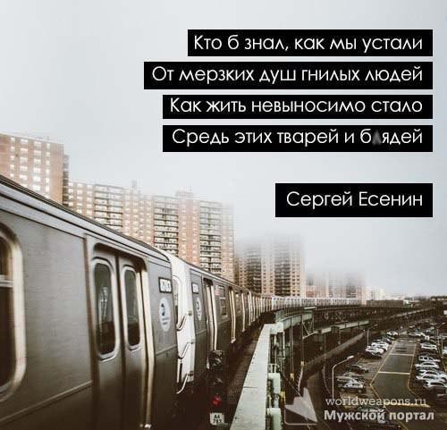 Кто б знал, как мы устали, От мерзких душ гнилых людей. Как жить невыносимо стало, Средь этих тварей и блдей.