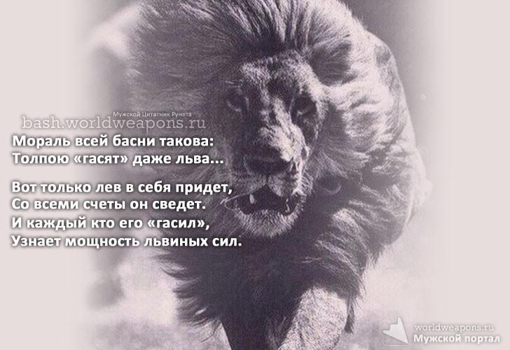 толпой гасят даже льва