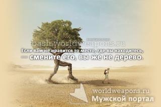Если вам не нравится то место, где вы находитесь, — смените его, вы же не дерево.