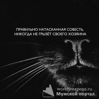 Правильно натасканная совесть, никогда не грызёт своего хозяина.